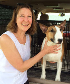 Cheryl Cornett - NH dog trainer